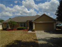 Home for sale: 11550 Pineloch Loop, Clermont, FL 34711