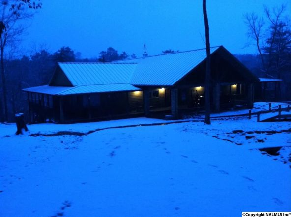 3809 County Rd. 275, Fort Payne, AL 35967 Photo 41
