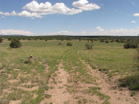 206e Bixler Trail, Ash Fork, AZ 86320 Photo 7