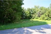 Home for sale: 0 Beaver Dam Rd., Beaverdam, VA 23015