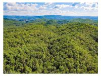 Home for sale: 290 Pelletier, Pisgah Forest, NC 28768