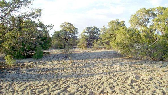 12498 N. Chino Rd., Williams, AZ 86046 Photo 28