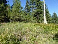 Home for sale: Nna Snowberry Ln. Lot 10, Tensed, ID 83851