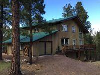 Home for sale: 43 Cr 2266, Alpine, AZ 85920