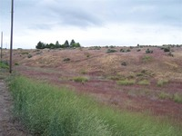 Home for sale: Tbd East Ln., Fruitland, ID 83619
