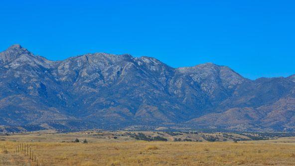16 Cline, Sonoita, AZ 85637 Photo 7