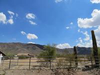 Home for sale: 2545 W. Olney Avenue, Phoenix, AZ 85041
