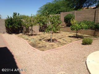 1530 E. Captain Dreyfus Avenue, Phoenix, AZ 85022 Photo 10