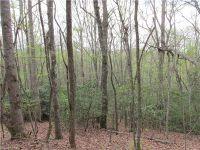Home for sale: Lot 24 Kanuga Ridge None, Hendersonville, NC 28739
