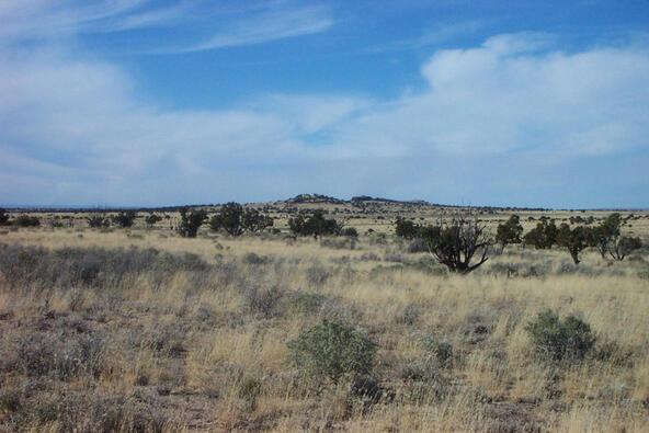 6218 S. Prairie Grass Ln., Williams, AZ 86046 Photo 12