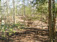 Home for sale: Lot 22 High Bluff Ln., New Kent, VA 23011