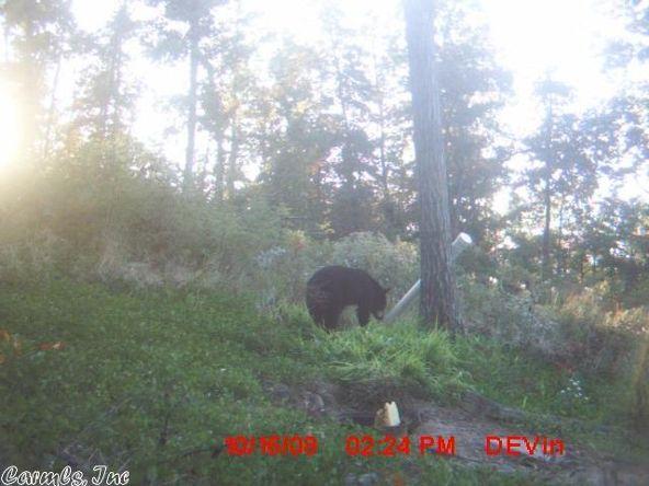 1127 Nature Dr., Saint Joe, AR 72675 Photo 38