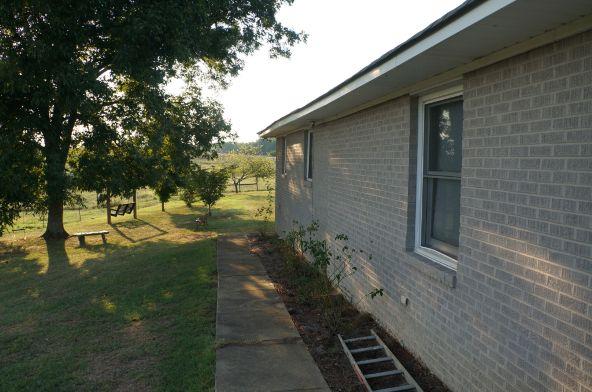 6491 County Rd. 49, Ranburne, AL 36273 Photo 27