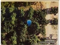 Home for sale: Lynn Ln. Way, Eufaula, OK 74432