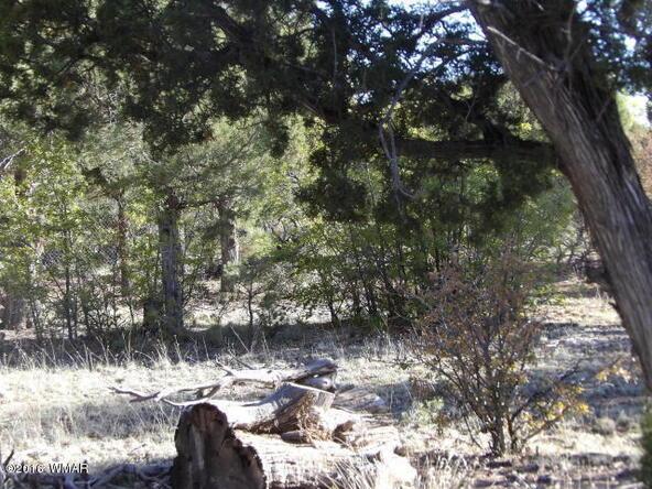 1741 E. Tosca Pl., Pinedale, AZ 85934 Photo 11