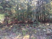 Home for sale: 575(Lot) Martin, Donalsonville, GA 39845