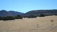 Home for sale: Gran Quivira Rd., Corona, NM 88318