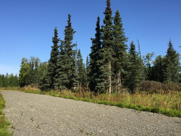 63787 Oil Well Rd., Ninilchik, AK 99639 Photo 30