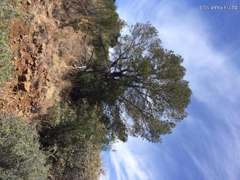 180 N. French Dr., Prescott, AZ 86303 Photo 11