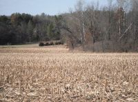 Home for sale: - County Rd. N., Lyndon Station, WI 53944