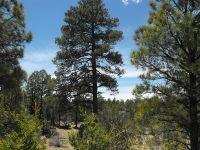 Home for sale: 5365 Twin Oaks Loop Lot# 50, Happy Jack, AZ 86024