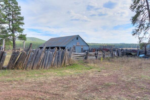 8100 W. Dk Ranch Rd., Flagstaff, AZ 86005 Photo 36