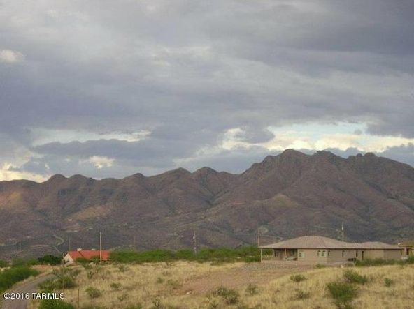 777 Dorotea, Rio Rico, AZ 85648 Photo 5