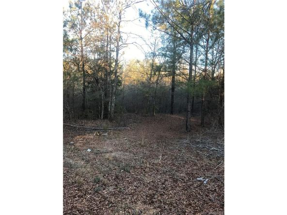 8841 Meriwether Trail, Honoraville, AL 36042 Photo 4