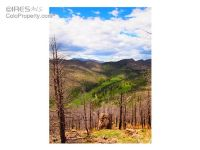Home for sale: Davis Ranch Rd., Bellvue, CO 80512