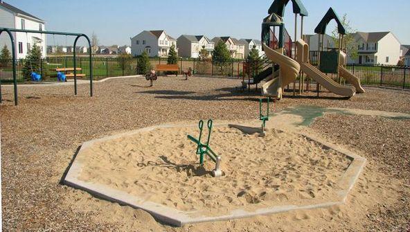 1656 Sandcastle Ln., Pingree Grove, IL 60140 Photo 22