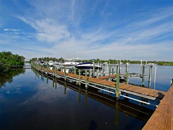 10621 Conch Shell Terrace, Bradenton, FL 34212 Photo 20