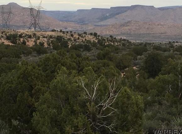 7340 N. Frerichs Ranch Rd., Hackberry, AZ 86411 Photo 7