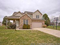 Home for sale: 4002 Appletree Dr., Monticello, IL 61856