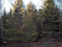 Home for sale: 38 Ac. Parkway Rd., Goodman, WI 54125