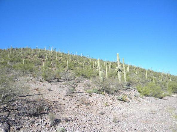 4235 W. Weiding, Tucson, AZ 85746 Photo 14