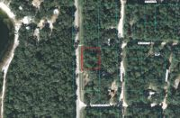 Home for sale: 0 N.E. 110th Avenue, Fort McCoy, FL 32134