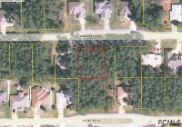 Home for sale: 49 Esperanto Dr., Palm Coast, FL 32164