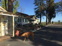 Home for sale: 3617 E. Nebraska Ave., Fresno, CA 93725