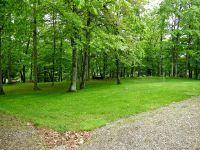 Home for sale: Oak Ridge Rd., Wausaukee, WI 54177