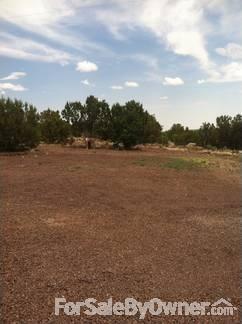 Acr 8159, Vernon, AZ 85920 Photo 12