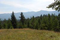 Home for sale: 42.4 Acres Blue Sky Rd., Bonners Ferry, ID 83805