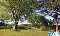 Home for sale: 6005 Greensport Rd., Ashville, AL 35953