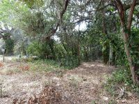Home for sale: 2812 Baker Dairy Rd., Haines City, FL 33844