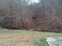 Home for sale: 999 Parker Branch Rd., Waynesboro, TN 38485