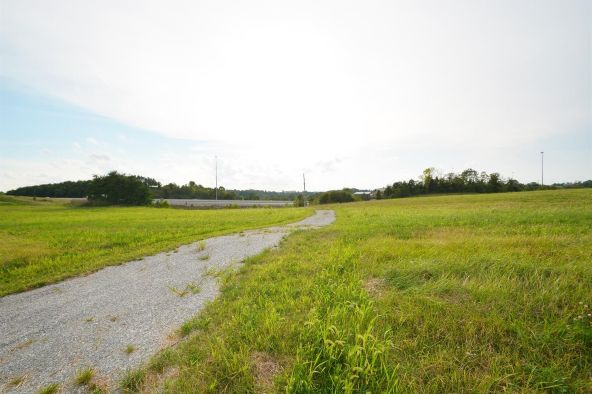 2 Noahs Way, Williamstown, KY 41097 Photo 23
