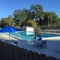 Home for sale: 6206 N.W. 105th Avenue, Alachua, FL 32615