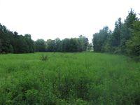 Home for sale: 000 Jerigan Dr., Somerville, TN 38068