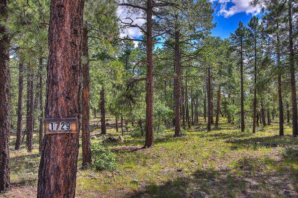 1729 S. Pine Ridge Dr., Williams, AZ 86046 Photo 1