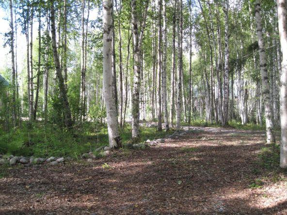 19994 E. Goshawk Way, Willow, AK 99688 Photo 26