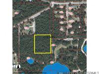 Home for sale: 0 No St., De Leon Springs, FL 32130